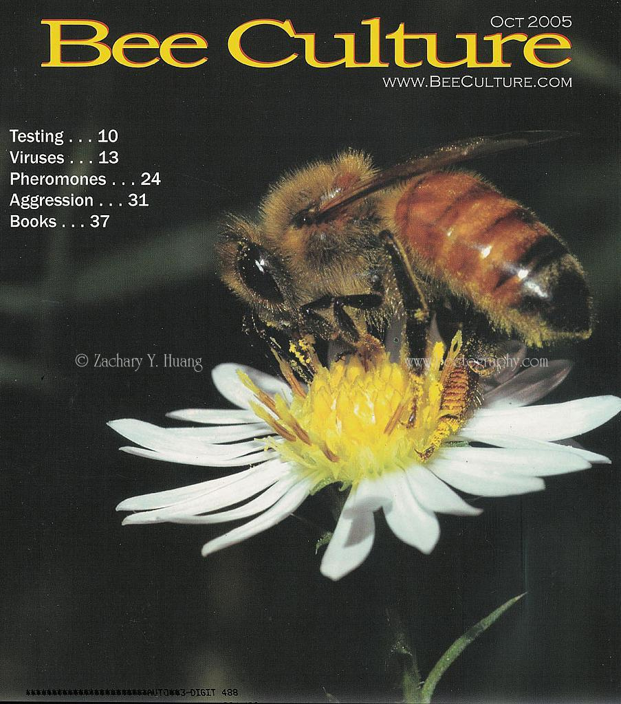 cover-BeeCulture-2005-10