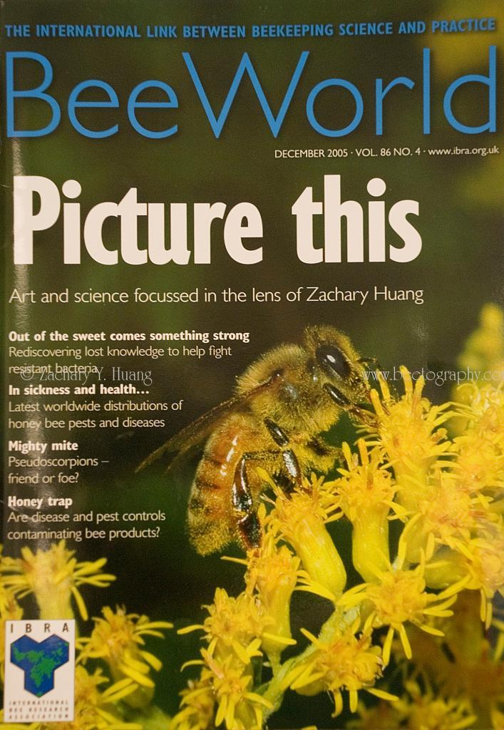 cover-Beeworld-2005-12